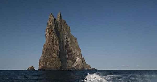 Dünyanın kayıp 8. kıtası Zelandiya'nın şekli gün yüzüne çıktı