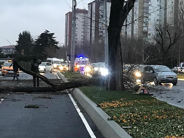 2019/01/feci-kaza-cadde-savas-alanina-dondu-c88003772c69-1.jpg