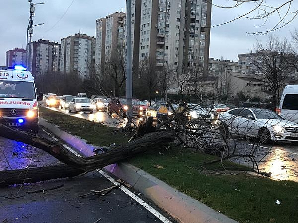 2019/01/feci-kaza-cadde-savas-alanina-dondu-c88003772c69-5.jpg