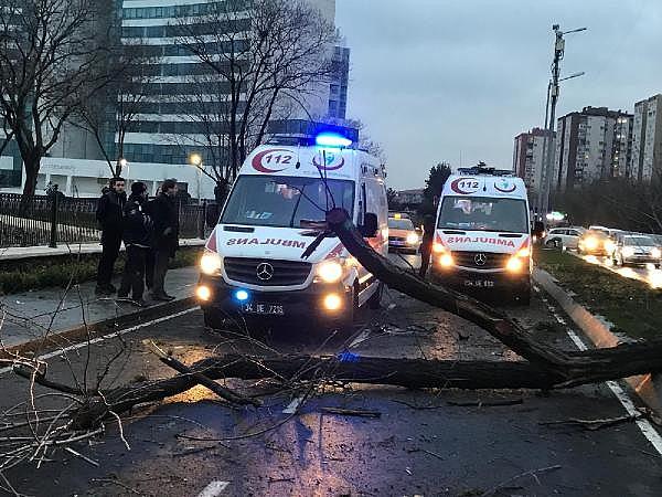 2019/01/feci-kaza-cadde-savas-alanina-dondu-c88003772c69-6.jpg