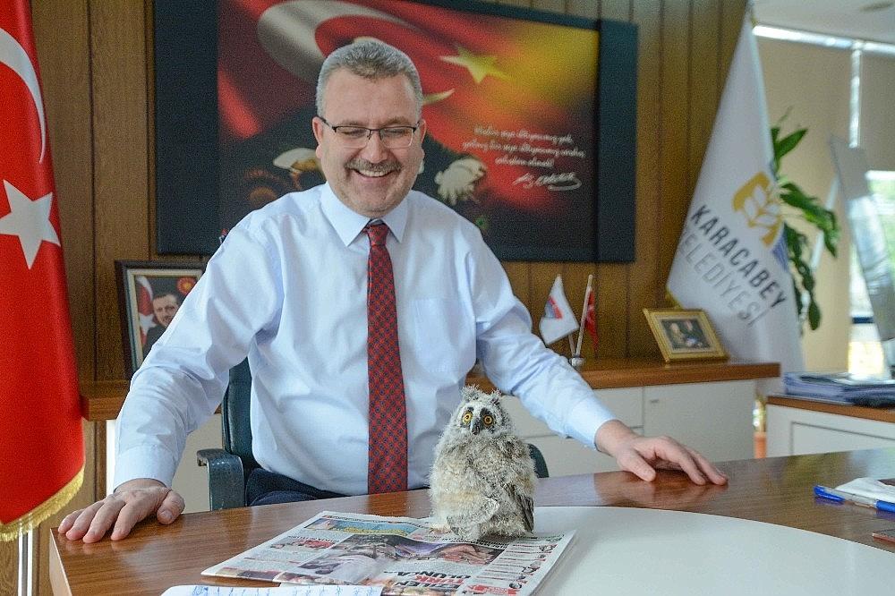 2019/01/yavru-baykus-belediye-baskaninin-maskotu-oldu---bursa-haber-20190111AW59-1.jpg