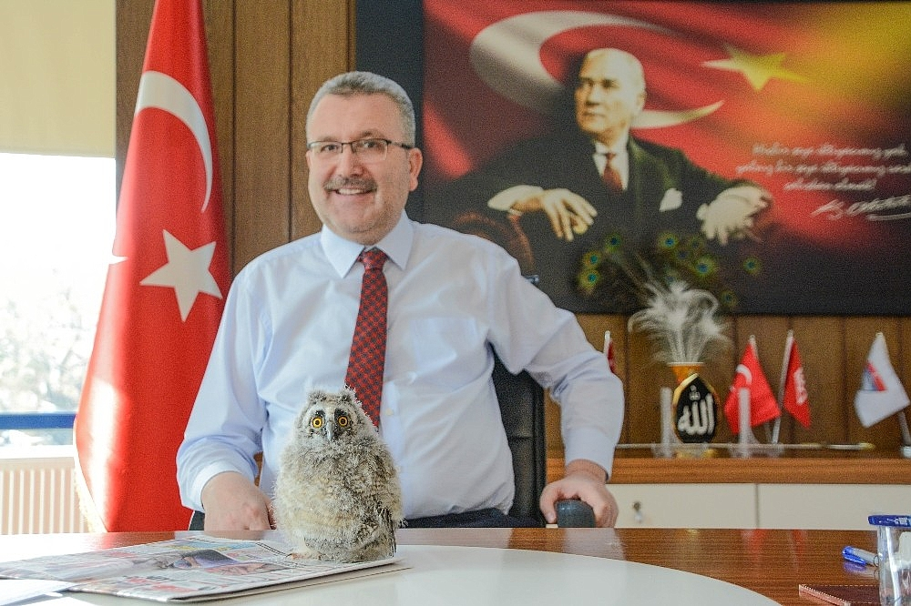 2019/01/yavru-baykus-belediye-baskaninin-maskotu-oldu---bursa-haber-20190111AW59-3.jpg