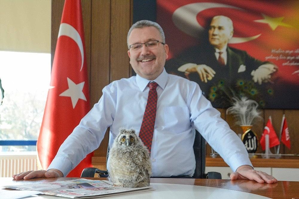 2019/01/yavru-baykus-belediye-baskaninin-maskotu-oldu---bursa-haber-20190111AW59-6.jpg