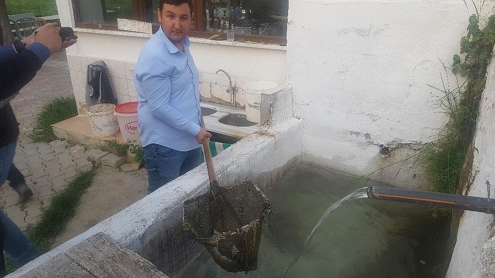 2019/05/uludagin-kar-sularinda-yetisiyor-iftar-sofrasini-susluyor---bursa-haberleri-20190524AW71-2.jpg