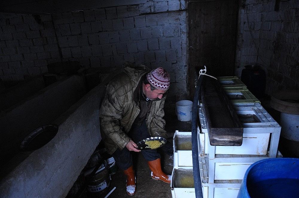 2019/05/uludagin-kar-sularinda-yetisiyor-iftar-sofrasini-susluyor---bursa-haberleri-20190524AW71-5.jpg