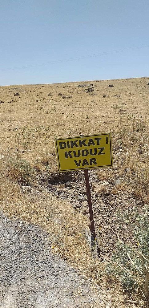 2019/06/kopek-kuduz-cikti-koy-karantinaya-alindi-20190613AW72-1.jpg