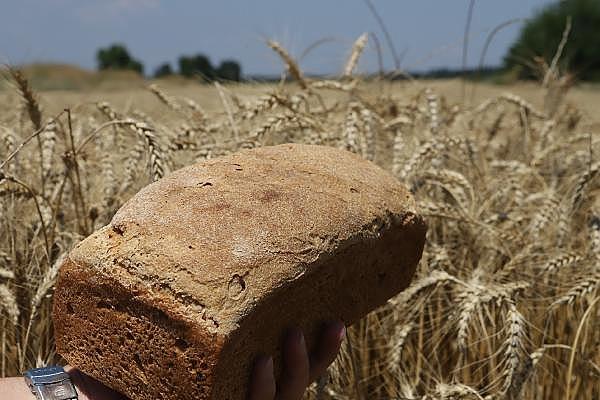 2019/07/ata-tohumlarinin-bugdayindan-ekmek-yapip-internetten-satiyor---bursa-haberleri-ba9d2c000a60-2.jpg