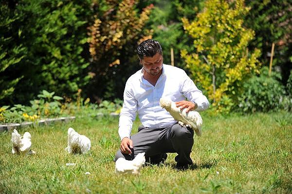2019/07/milli-irk-osmanli-sultan-tavuklari-hobicilerin-gozdesi---bursa-haberleri-6d90765e4800-8.jpg