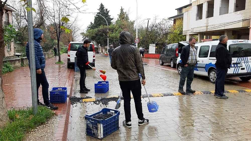 2019/12/450-kilo-zeytin-yola-sacildi---bursa-haberleri-20191204AW87-2.jpg