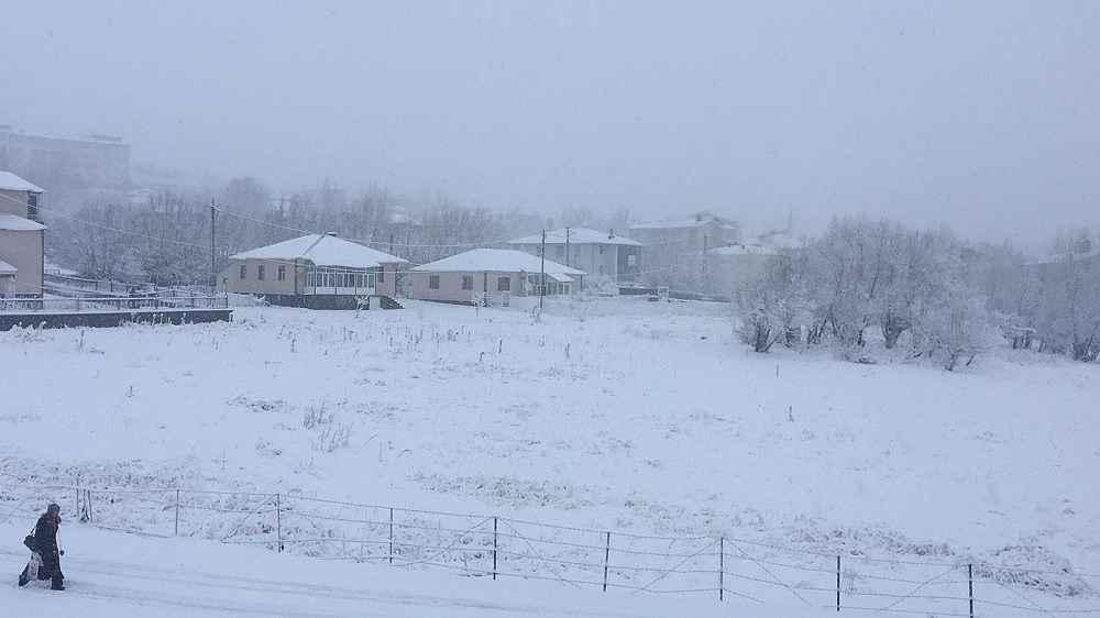2019/12/bingolun-karliova-ve-yedisu-ilceleri-gune-karla-uyandi-20191202AW87-9.jpg