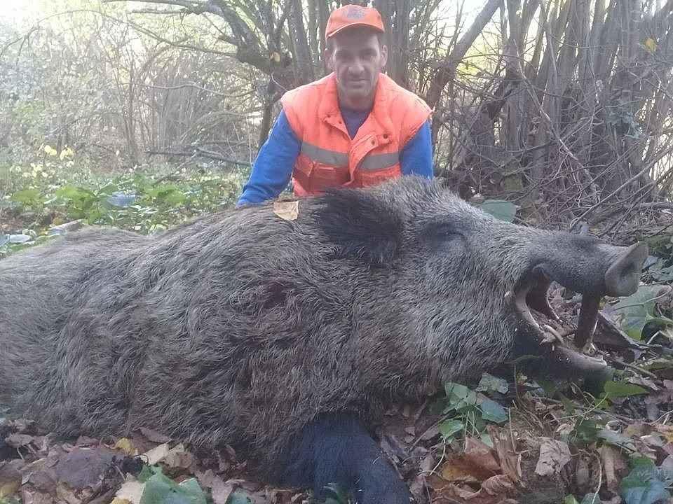2019/12/inegolde-avcilar-300-kiloluk-yaban-domuzu-vurdu---bursa-haberleri-20191202AW87-1.jpg