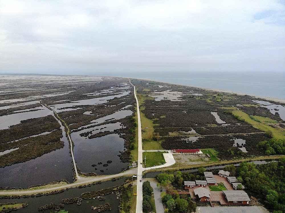 2020/05/kizilirmak-deltasi-kus-cenneti-kararname-ile-kesin-korunacak-hassas-alan-ilan-edildi-20200512AW01-1.jpg