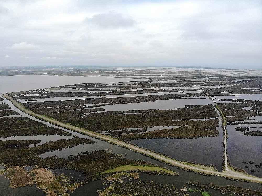 2020/05/kizilirmak-deltasi-kus-cenneti-kararname-ile-kesin-korunacak-hassas-alan-ilan-edildi-20200512AW01-2.jpg