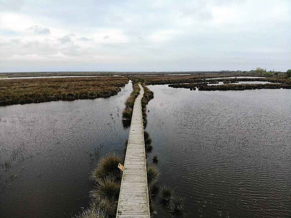 2020/05/kizilirmak-deltasi-kus-cenneti-kararname-ile-kesin-korunacak-hassas-alan-ilan-edildi-20200512AW01-3.jpg