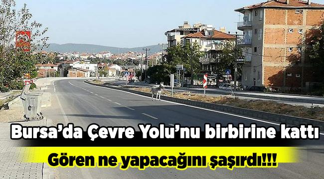 Bursa'da eşek alarmı!!! Sürücülere zor anlar yaşattı