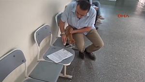 Bursa'da kucağındaki yavru kedi için suç duyurusunda bulundu!