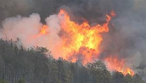 Kütahya'da ki orman yangını söndürülemiyor! Alevler il sınırına dayandı!