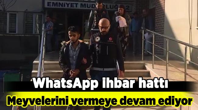 Whatsapp ihbar hattı meyvelerini vermeye devam ediyor