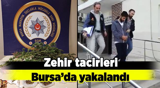 Zehir tacirleri Bursa'da yakalandı