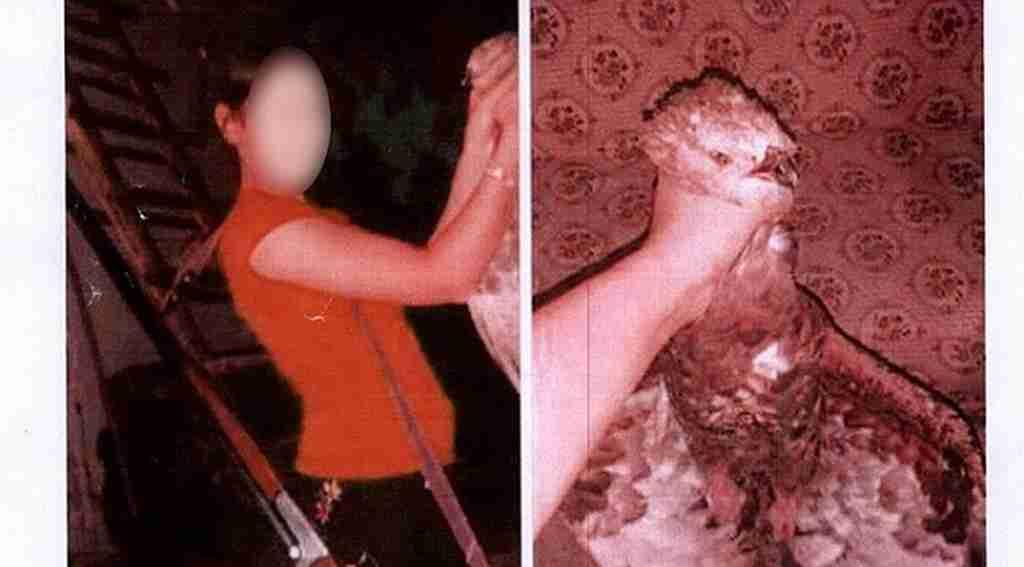Kızıl şahini öldürdü, çekinmeden sosyal medyada paylaştı