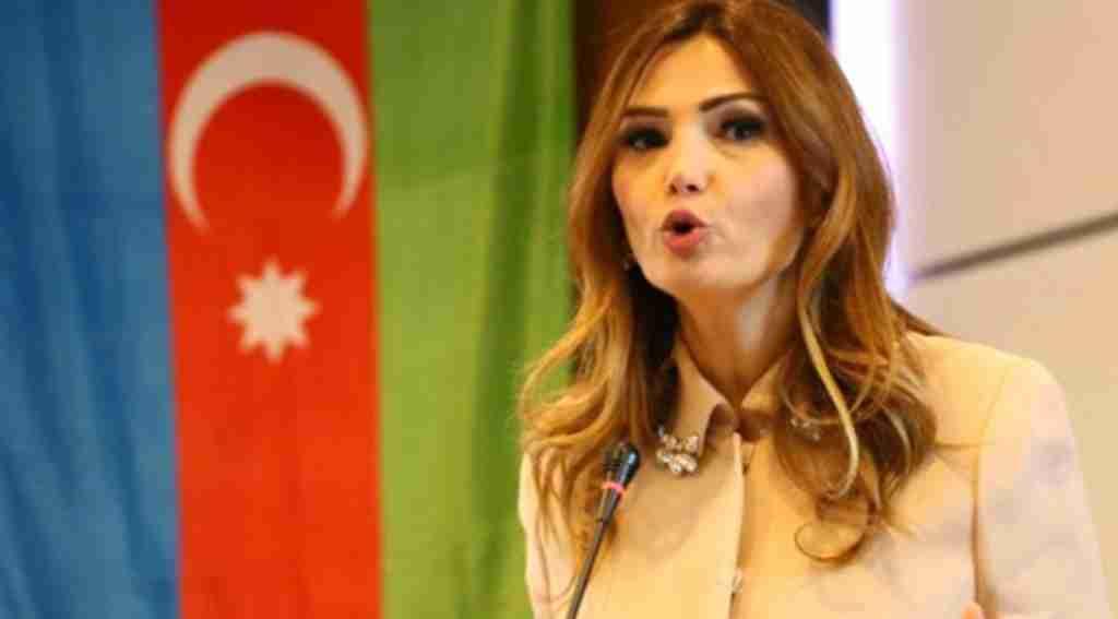 Kardeş ülkede Azeri Vekil'den düşman çatlatan sözler!