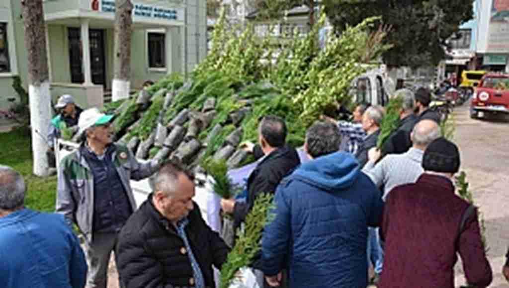 İzniklilere 5 bin fidan dağıtıldı - Bursa Haberleri