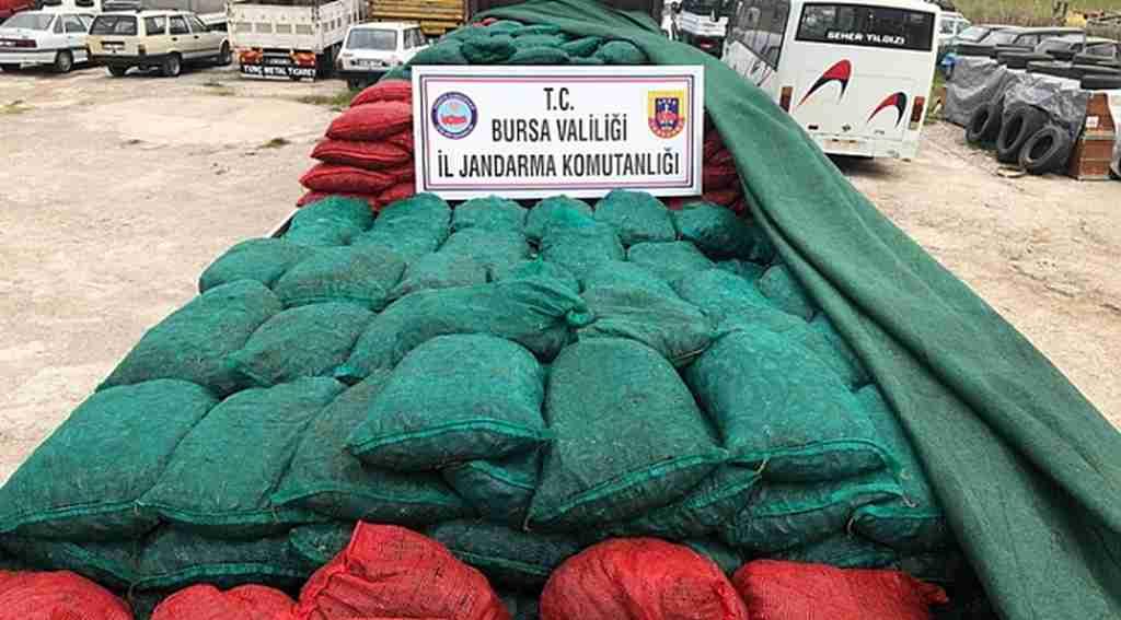 Bursa'da 30 ton kaçak midye ele geçirildi - Bursa Haberleri
