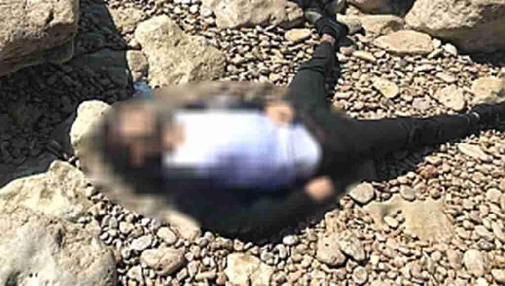 Van Gölü Sahilinde başından vurulmuş halde bulundu