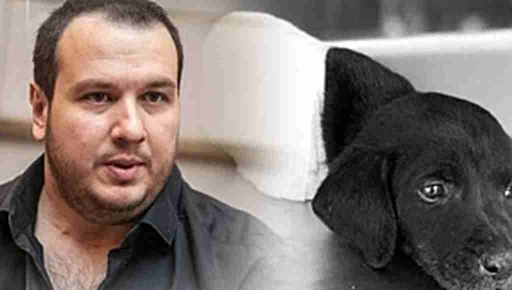 Türkiye'yi ayağa kaldıran yavru köpek vahşetinde ünlüler isyan etti!