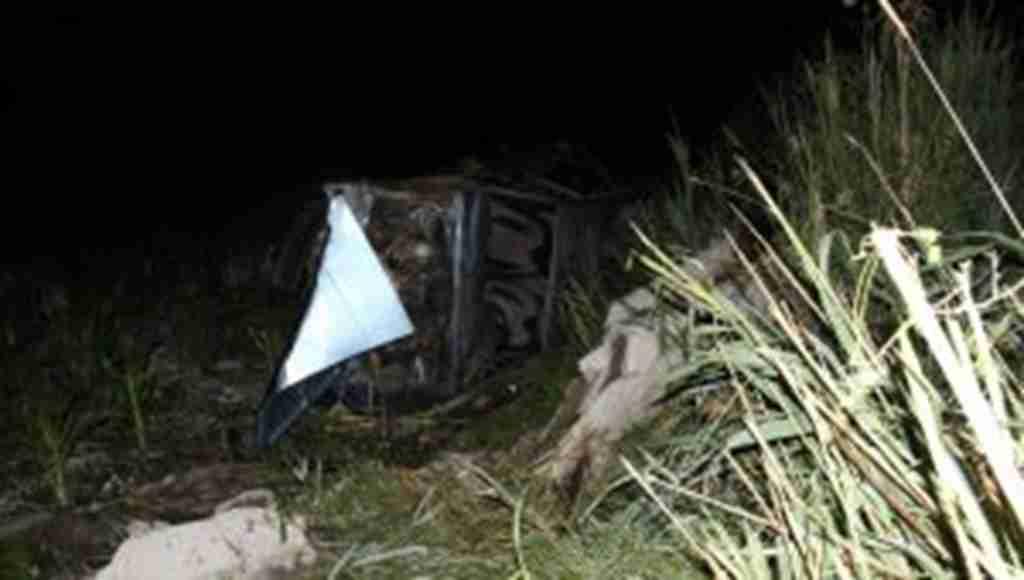 Yaban domuzunun sebep olduğu trafik kazasında: 5 yaralı