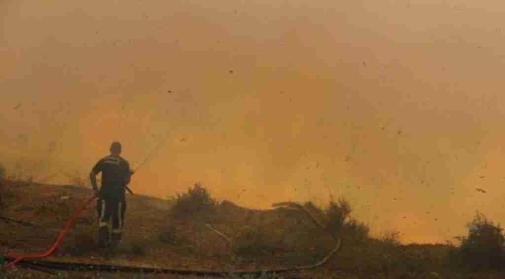 Antalya'da orman yangını, evler ve seralar da zarar gördü