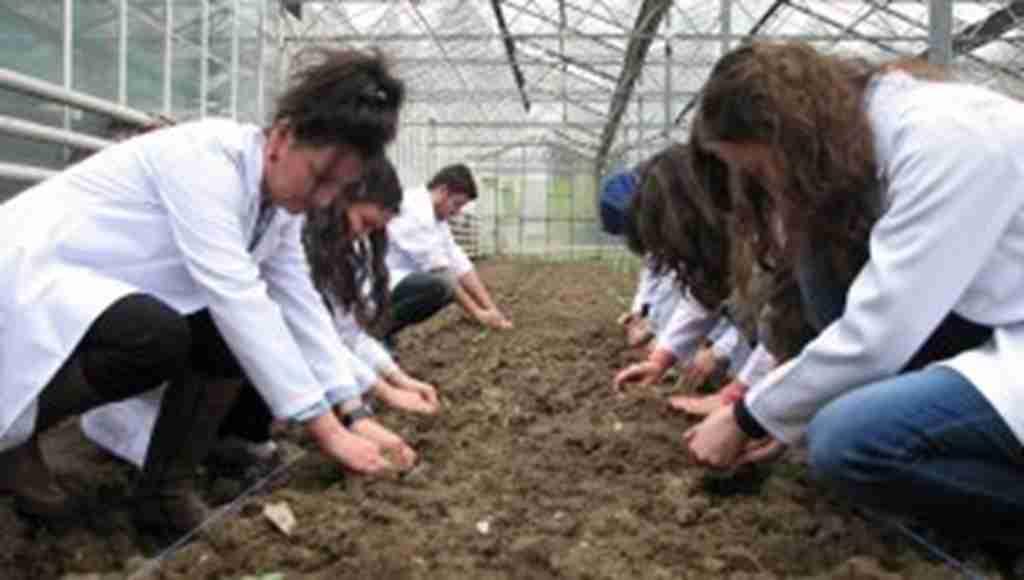 Ziraat Mühendisleri, tarlada ve çiftlikte mesleği öğreniyor - Bursa Haberleri