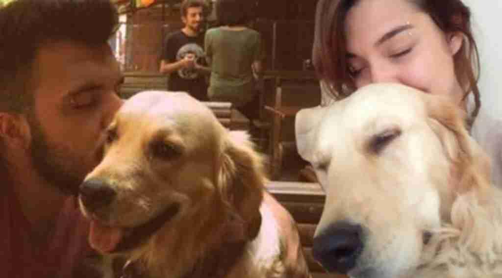 Sevgililerin köpek davasında yeni iddia!