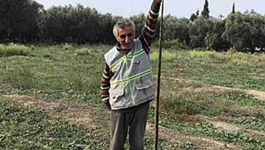 Yaralı buldukları yılanı veterinere götürdüler - Bursa Haberleri