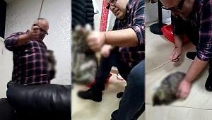 Kediyi sopayla döven cani iş adamı gözaltında!