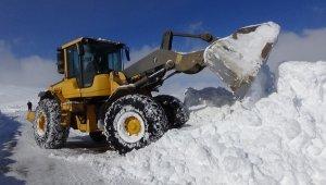 Muş'ta 7 Ocak 2019 OKullara Kar Tatili - Muş 7 Ocak Pazartesi Kar Tatili