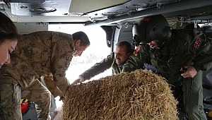 Tunceli Valiliği dağ keçişi avlanmasını yasakladı