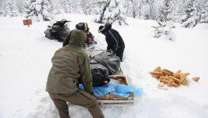 Uludağ'da yaban hayvanlarını beslediler - Bursa Haber