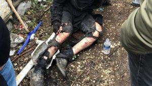 Üniversite öğrencisi köpek saldırısıyla yaralandı - Bursa Haber