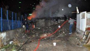 Ankara'da gecekonduda çıkan yangında 5 yavru köpek yanarak can verdi!