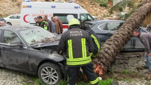 Aşırı hız yapan otomobilin devirdiği ağaç başka bir otomobili hurdaya çevirdi