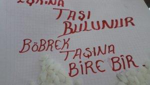"""""""Eşkina"""" taşı böbrek taşını düşürüyor - Bursa Haberleri"""