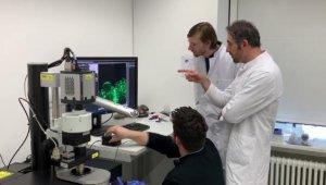 Almanya Türk doktoru konuşuyor... 3 boyutlu yazıcılarla 'yapay organ' geliştiriyor