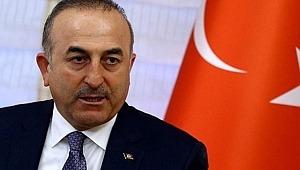 Bakan Çavuşoğlu'ndan Avusturya'ya bozkurt işareti tepkisi,
