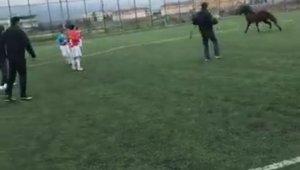 Futbol turnuvasında sahaya giren at korku dolu anlar yaşattı - Bursa Haberleri
