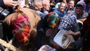 Mesir festivali karma töreninde kazan izdihamı