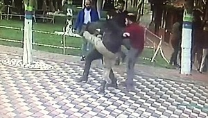 Bursa'da Yaşanan, Türkiye'nin Konuştuğu Darp Olayında Polislere İstenen Ceza Belli Oldu!