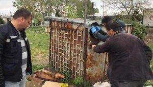 Bursa'da güvercin hırsızlığı - Bursa Haberleri