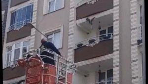 Çatıdan sarkan ipe dolanan güvercin kurtarıldı