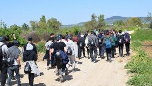Doğaseverler Mysia Yolları'nda - Bursa Haberleri